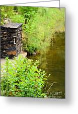 Along The Shallow Water Greeting Card