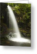 Alongside Grotto Falls Greeting Card by Andrew Soundarajan