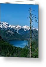 Alp See Lake In Bavaria Germany Greeting Card