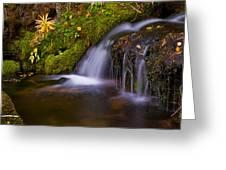 Alpine Waterfall Greeting Card