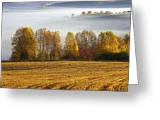 Altai Foothills Greeting Card