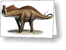 Amargasaurus Cazaui, A Prehistoric Era Greeting Card