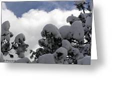 Amazing Arizona Winter Skies Greeting Card