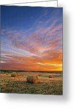 Amazing Sunset Over Pasture Greeting Card