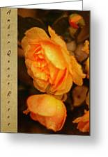 Amber Queen Rose Greeting Card