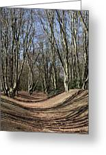 Ambresbury Banks Bronze Age Fortification Greeting Card