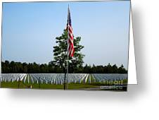American Flag At Soldiers Graves Greeting Card