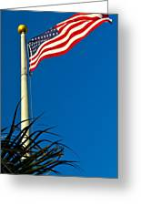 American Flag Flying Over The Palms Greeting Card