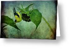 American Goldfinch II Greeting Card