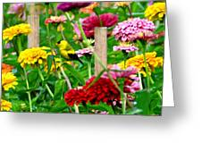 American Goldfinch In The Garden Greeting Card