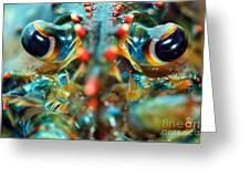 American Lobsters Greeting Card