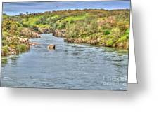 American River II Greeting Card