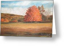 Amid The Tranquil Presence Of Change Greeting Card