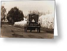 Amish Buggy And Wagon Greeting Card
