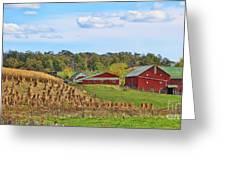 Amish Cornfield Greeting Card