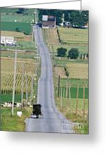 Amish Horse And Buggy On Country Road Greeting Card