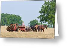 Amish Manure Spreader Greeting Card