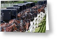 Amish Parking Lot Greeting Card by Tom Mc Nemar