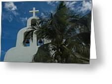 Among The Palms Greeting Card