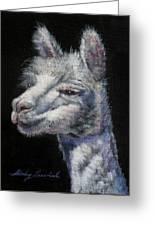 Amorous Alpaca Greeting Card