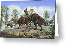 Amurosaurus Riabinini Dinosaurs Grazing Greeting Card