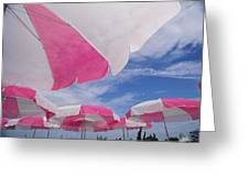 An Arrangement Of Pink And White Beach Greeting Card