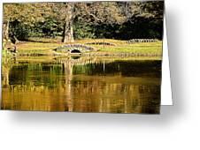 An Autumn Bridge Greeting Card