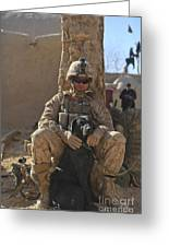 An Ied Detection Dog Keeps His Dog Greeting Card