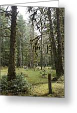 An Old Cemetary In A Forest Greeting Card by Taylor S. Kennedy
