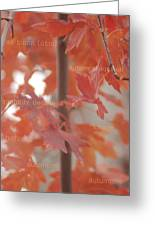 An Orange Fall Tree With Words Greeting Card