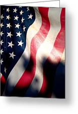 And The Flag Still Stood Greeting Card by Catherine Natalia  Roche