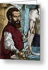 Andreas Vesalius, Flemish Anatomist Greeting Card