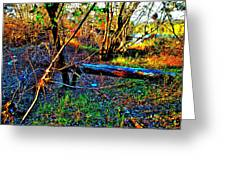Andy River 13 Greeting Card