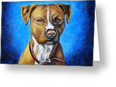 American Staffordshire Terrier Dog Painting Greeting Card