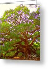 Angel Oak Tree1 Greeting Card