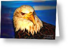Angel The Bald Eagle Greeting Card
