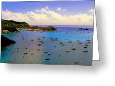 Anguilla's Softness Greeting Card