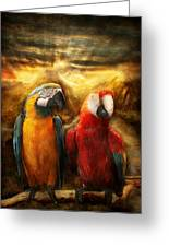 Animal - Parrot - Parrot-dise Greeting Card