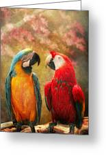 Animal - Parrot - We'll Always Have Parrots Greeting Card