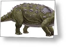 Ankylosaurus Magniventris Greeting Card