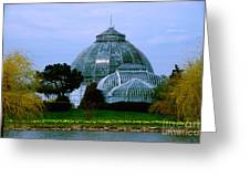 Anna Scripps Whitcomb Conservatory Greeting Card