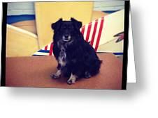 Annie <3 Greeting Card