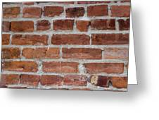 Another Brick In The Wall Greeting Card