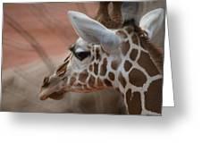Another Giraffe Greeting Card