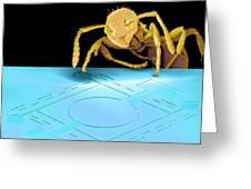 Ant On Pressure Sensor, Sem Greeting Card