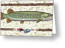 Antique Birch Pike And Lure Greeting Card