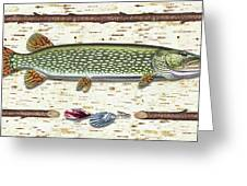 Antique Birch Pike And Lure Greeting Card by JQ Licensing