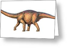 Apatosaurus Dinosaur Greeting Card
