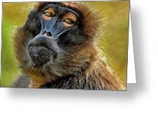 Ape Greeting Card