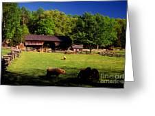 Appalachian Barn Yard Greeting Card